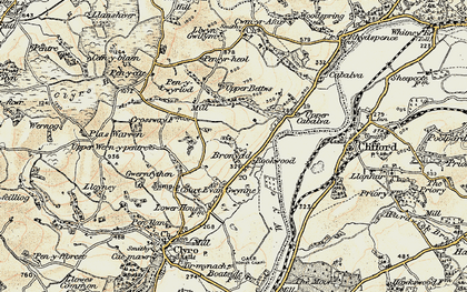Old map of Bronydd in 1900-1902