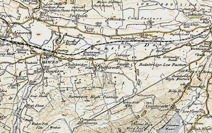 Old map of Bainbridge Ings in 1903-1904