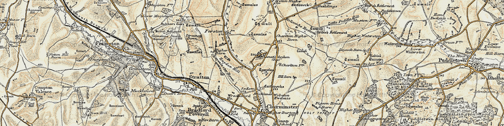Old map of Wolfeton Clump in 1899