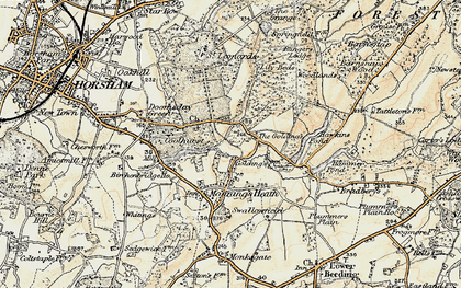 Old map of Lily Beds in 1898