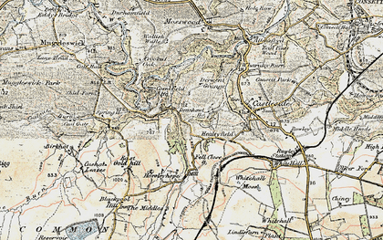 Old map of Whitehall Moss in 1901-1904