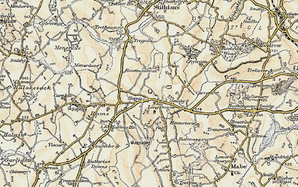 Old map of Herniss in 1900