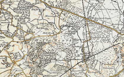 Old map of White Sheet Plantation in 1897-1909