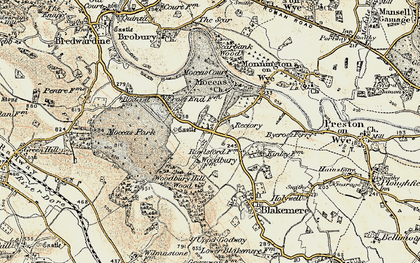Old map of Woodbury Hill Wood in 1900-1901