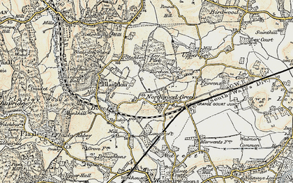 Old map of Ley Park in 1898-1900