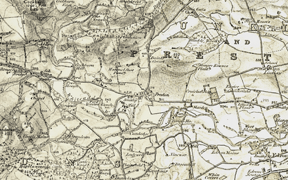Old map of Baird's Covert in 1901-1904