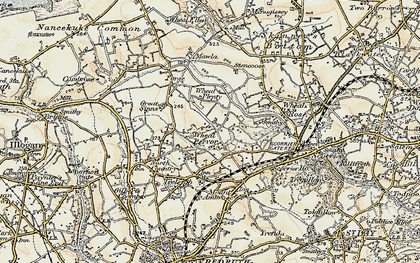 Old map of Radnor in 1900