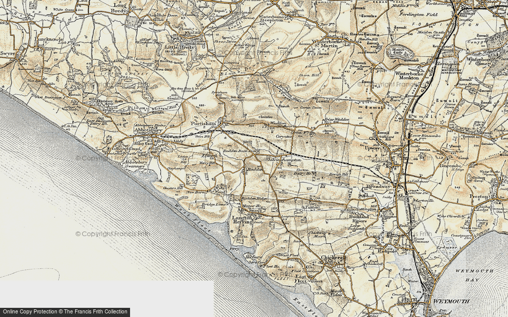 Old Map of Historic Map covering Wyke Wood in 1899