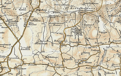 Old map of Rosenannon in 1900