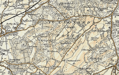Old map of St Leonard's Forest in 1898