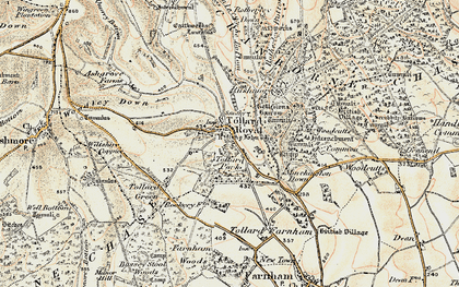 Old map of Tollard Royal in 1897-1909