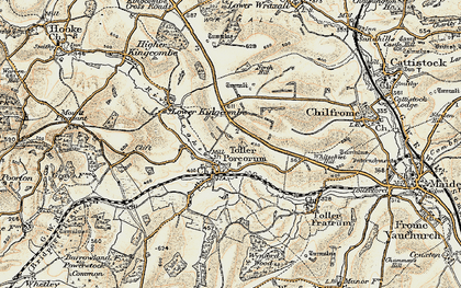 Old map of Toller Porcorum in 1899