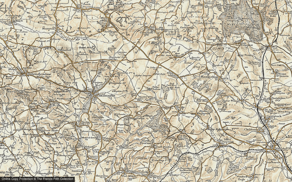 Old Map of Toller Whelme, 1899 in 1899