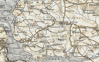 Old map of Tredrizzick in 1900