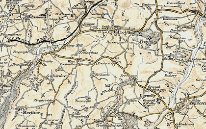 Old map of West Trelowthas in 1900