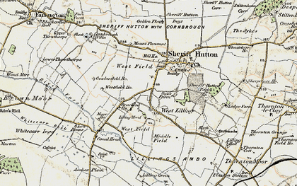 Old map of Lilling Wood in 1903-1904