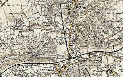 Old map of Ashcombe Wood in 1898-1909