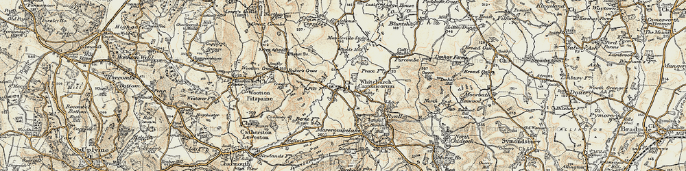 Old map of Whitchurch Canonicorum in 1898-1899