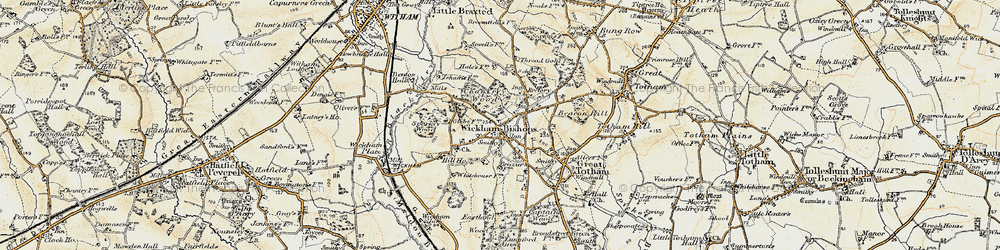 Old map of Wickham Bishops in 1898