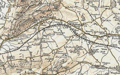 Old map of Winnington Green in 1902