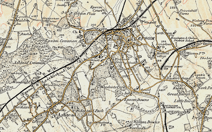 Old map of Woodcote in 1897-1909