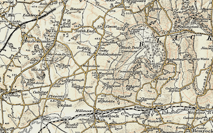 Old map of Woodgate in 1898-1900
