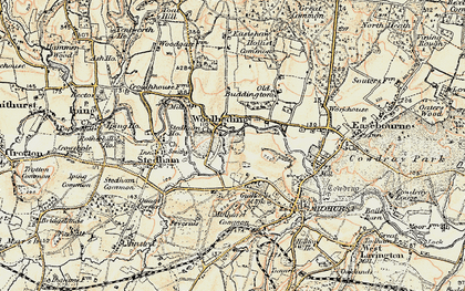 Old map of Woolbeding in 1897-1900