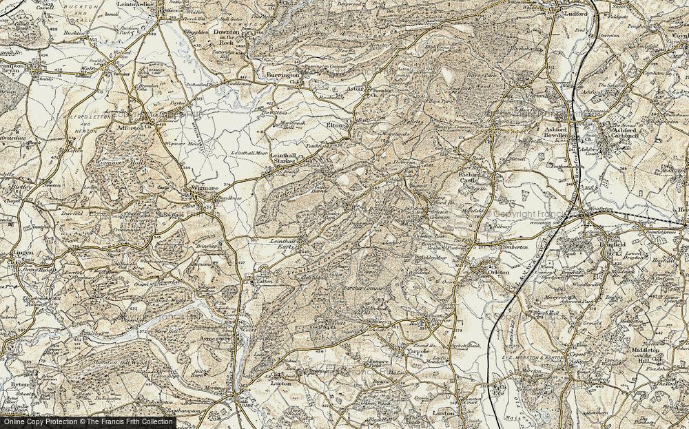 Wylde, 1901-1903