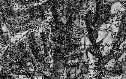 Old map of Balcombe Forest in 1895
