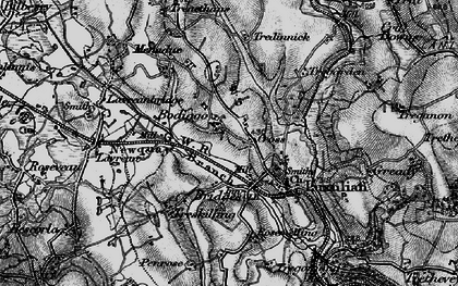 Old map of Bodiggo in 1895