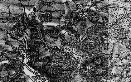 Old map of Langley Wood in 1895