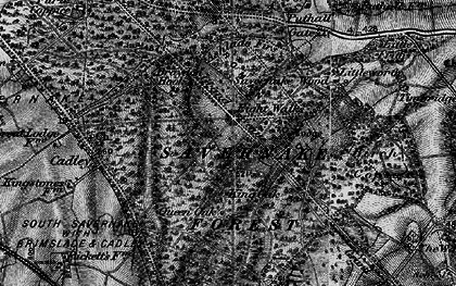 Old map of Savernake Forest in 1898