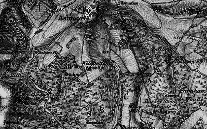 Old map of Ashmore Wood in 1895