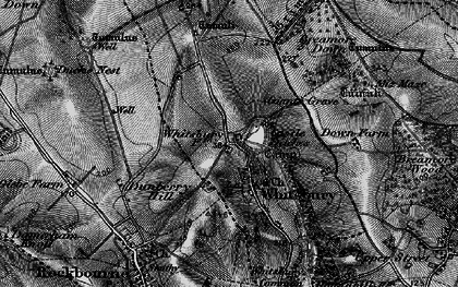 Old map of Whitsbury in 1895